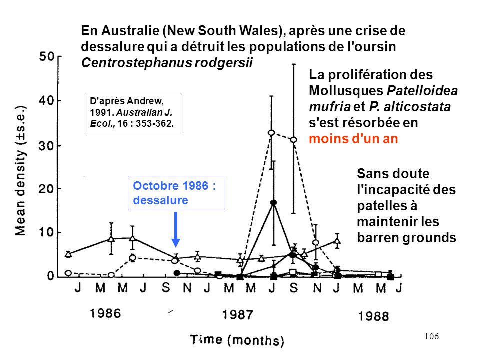 106 Octobre 1986 : dessalure En Australie (New South Wales), après une crise de dessalure qui a détruit les populations de l oursin Centrostephanus rodgersii La prolifération des Mollusques Patelloidea mufria et P.