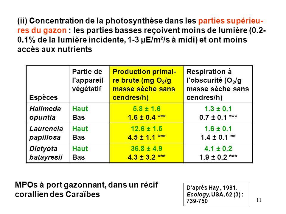 11 (ii) Concentration de la photosynthèse dans les parties supérieu- res du gazon : les parties basses reçoivent moins de lumière (0.2- 0.1% de la lumière incidente, 1-3 µE/m²/s à midi) et ont moins accès aux nutrients Espèces Partie de l appareil végétatif Production primai- re brute (mg O 2 /g masse sèche sans cendres/h) Respiration à l obscurité (O 2 /g masse sèche sans cendres/h) Halimeda opuntia Haut Bas 5.8 ± 1.6 1.6 ± 0.4 *** 1.3 ± 0.1 0.7 ± 0.1 *** Laurencia papillosa Haut Bas 12.6 ± 1.5 4.5 ± 1.1 *** 1.6 ± 0.1 1.4 ± 0.1 ** Dictyota batayresii Haut Bas 36.8 ± 4.9 4.3 ± 3.2 *** 4.1 ± 0.2 1.9 ± 0.2 *** MPOs à port gazonnant, dans un récif corallien des Caraïbes D après Hay, 1981.