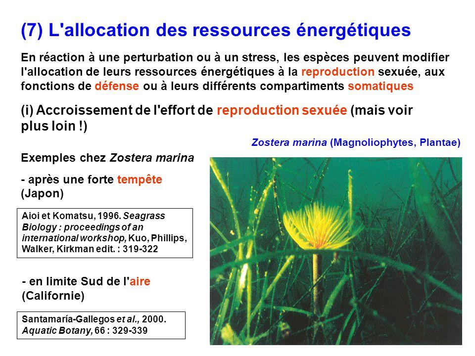 19 (7) L'allocation des ressources énergétiques En réaction à une perturbation ou à un stress, les espèces peuvent modifier l'allocation de leurs ress