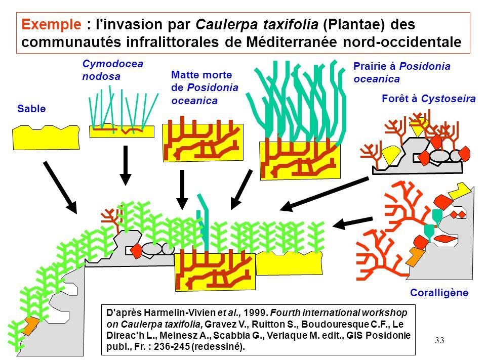 33 Sable Cymodocea nodosa Matte morte de Posidonia oceanica Exemple : l invasion par Caulerpa taxifolia (Plantae) des communautés infralittorales de Méditerranée nord-occidentale Prairie à Posidonia oceanica Forêt à Cystoseira D après Harmelin-Vivien et al., 1999.