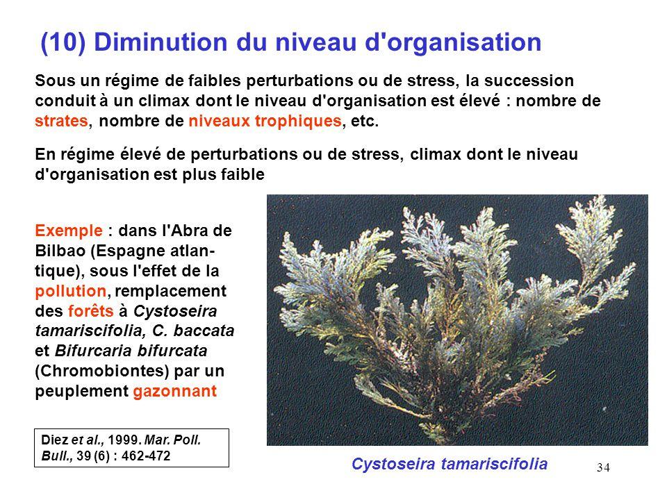 34 (10) Diminution du niveau d organisation Sous un régime de faibles perturbations ou de stress, la succession conduit à un climax dont le niveau d organisation est élevé : nombre de strates, nombre de niveaux trophiques, etc.