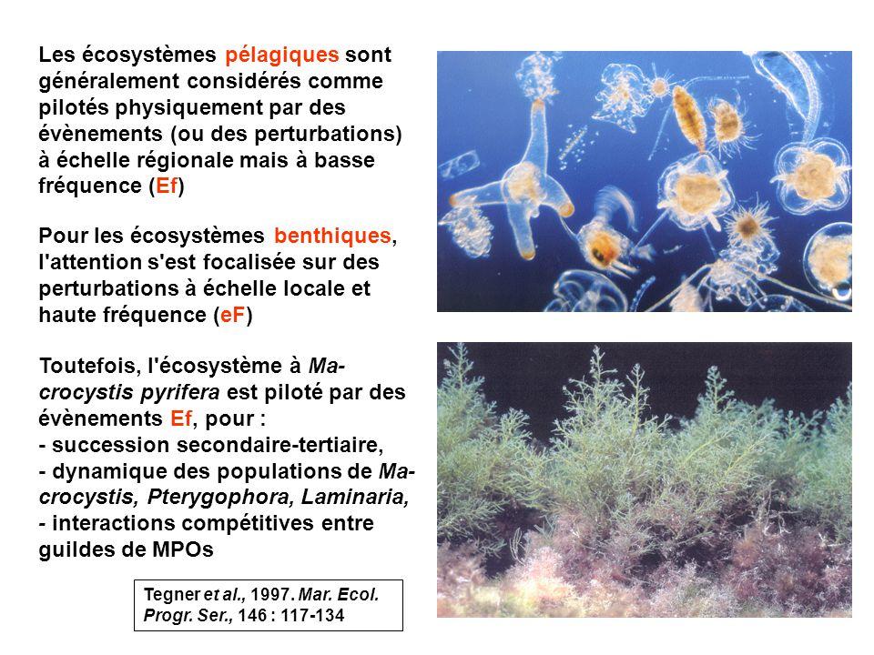 5 Les écosystèmes pélagiques sont généralement considérés comme pilotés physiquement par des évènements (ou des perturbations) à échelle régionale mais à basse fréquence (Ef) Pour les écosystèmes benthiques, l attention s est focalisée sur des perturbations à échelle locale et haute fréquence (eF) Toutefois, l écosystème à Ma- crocystis pyrifera est piloté par des évènements Ef, pour : - succession secondaire-tertiaire, - dynamique des populations de Ma- crocystis, Pterygophora, Laminaria, - interactions compétitives entre guildes de MPOs Tegner et al., 1997.