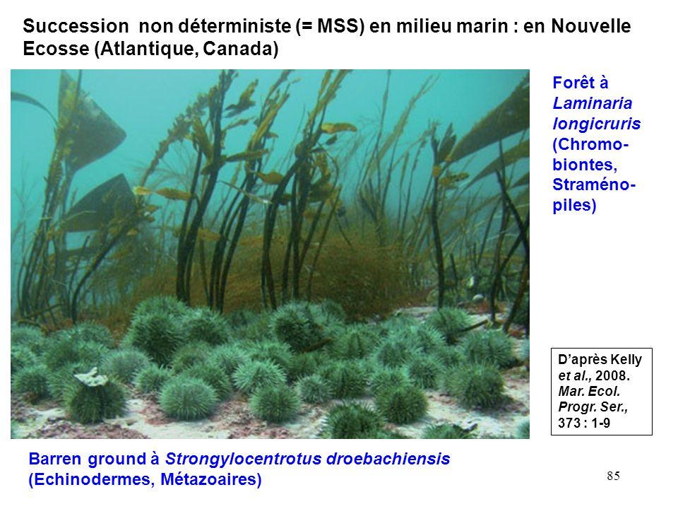 85 Barren ground à Strongylocentrotus droebachiensis (Echinodermes, Métazoaires) Forêt à Laminaria longicruris (Chromo- biontes, Straméno- piles) Daprès Kelly et al., 2008.
