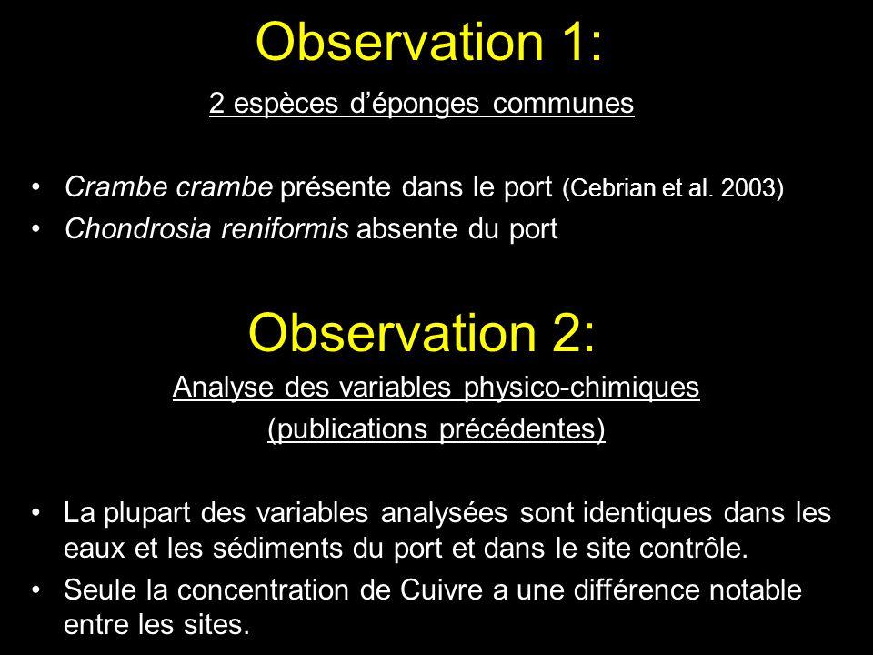 Observation 1: 2 espèces déponges communes Crambe crambe présente dans le port (Cebrian et al. 2003) Chondrosia reniformis absente du port Observation