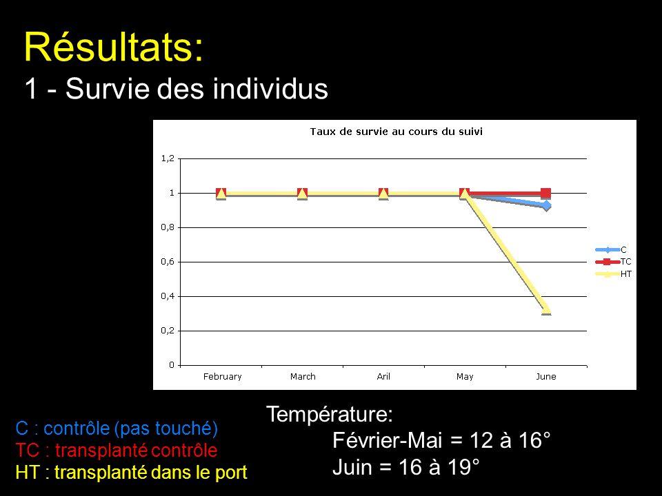 Résultats: 1 - Survie des individus C : contrôle (pas touché) TC : transplanté contrôle HT : transplanté dans le port Température: Février-Mai = 12 à