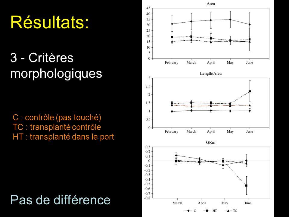 Résultats: 3 - Critères morphologiques C : contrôle (pas touché) TC : transplanté contrôle HT : transplanté dans le port Pas de différence