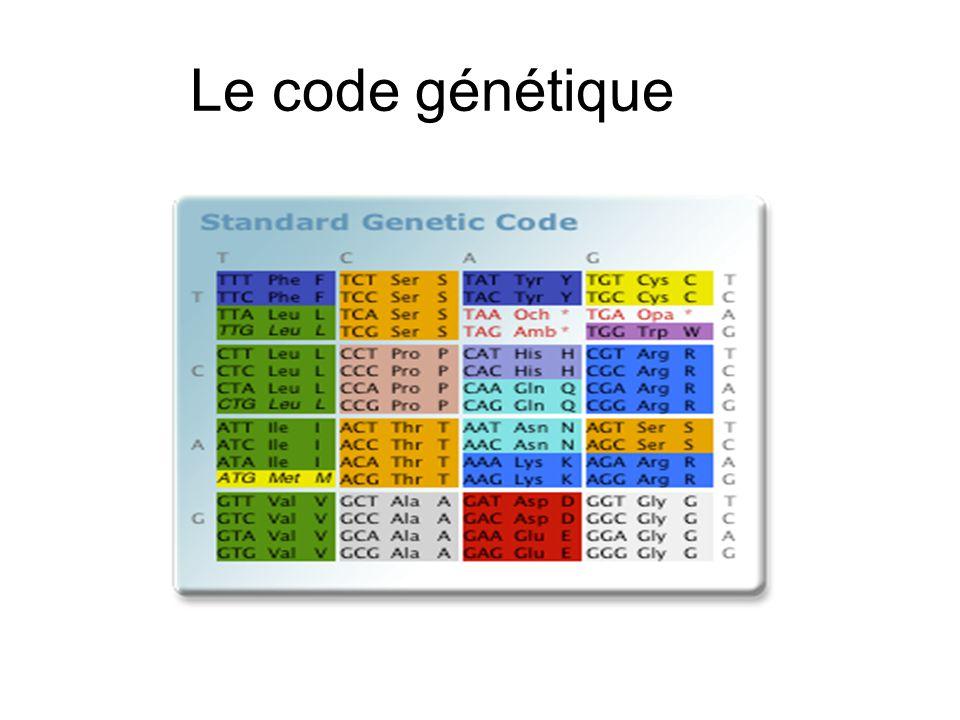 Le code génétique