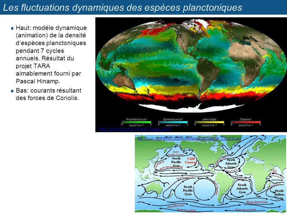 Les fluctuations dynamiques des espèces planctoniques Haut: modèle dynamique (animation) de la densité despèces planctoniques pendant 7 cycles annuels