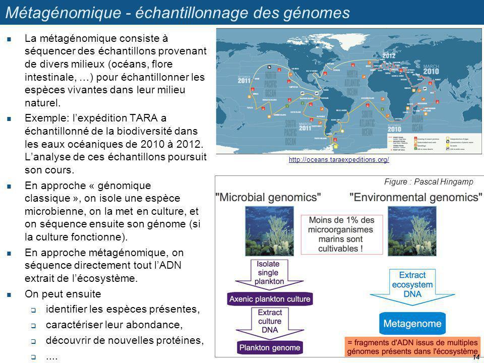 Métagénomique - échantillonnage des génomes La métagénomique consiste à séquencer des échantillons provenant de divers milieux (océans, flore intestin