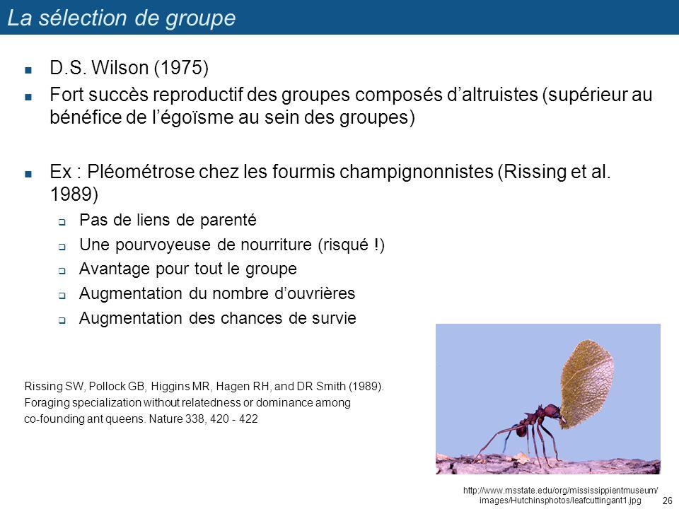 La sélection de groupe D.S. Wilson (1975) Fort succès reproductif des groupes composés daltruistes (supérieur au bénéfice de légoïsme au sein des grou