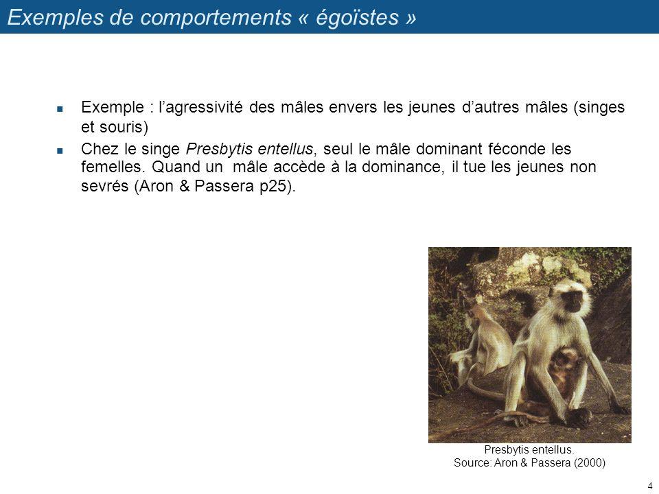 Presbytis entellus. Source: Aron & Passera (2000) Exemples de comportements « égoïstes » Exemple : lagressivité des mâles envers les jeunes dautres mâ
