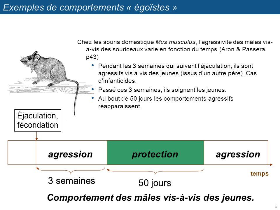 Exemples de comportements « égoïstes » Chez les souris domestique Mus musculus, lagressivité des mâles vis- a-vis des souriceaux varie en fonction du