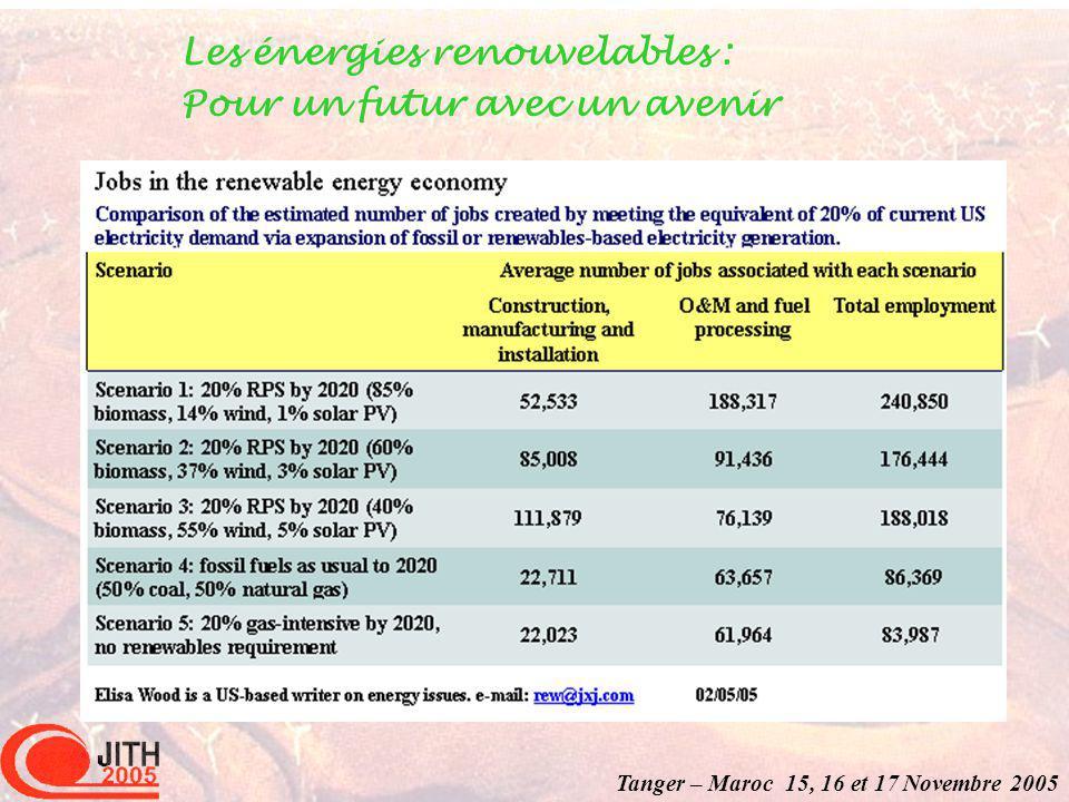Tanger – Maroc 15, 16 et 17 Novembre 2005 Les énergies renouvelables : Pour un futur avec un avenir