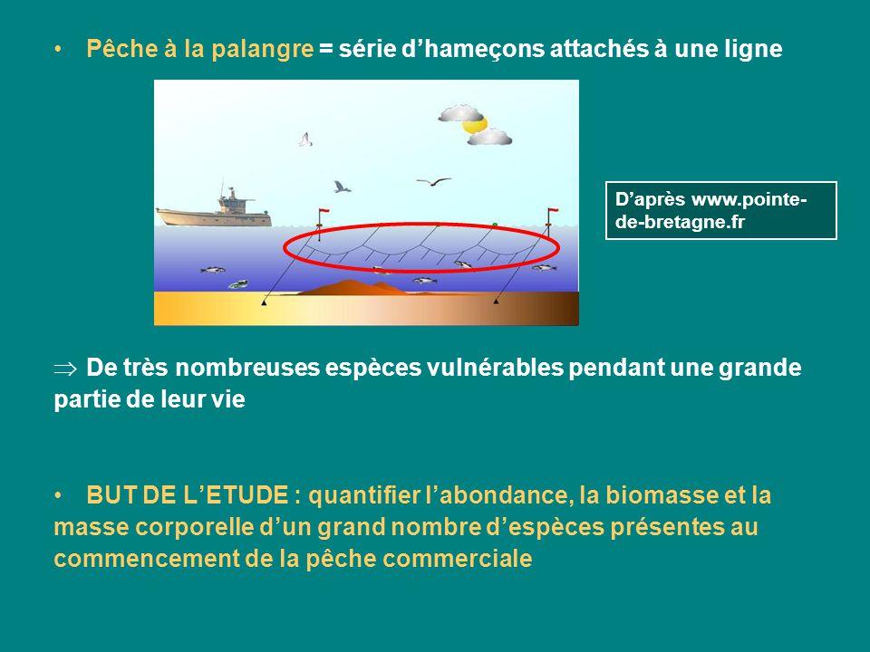 Daprès Myers et Worm, Rapid worldwide depletion of predatory fish communities (2003) Nombre de prises pour 100 hameçons Latitude Longitude 1999