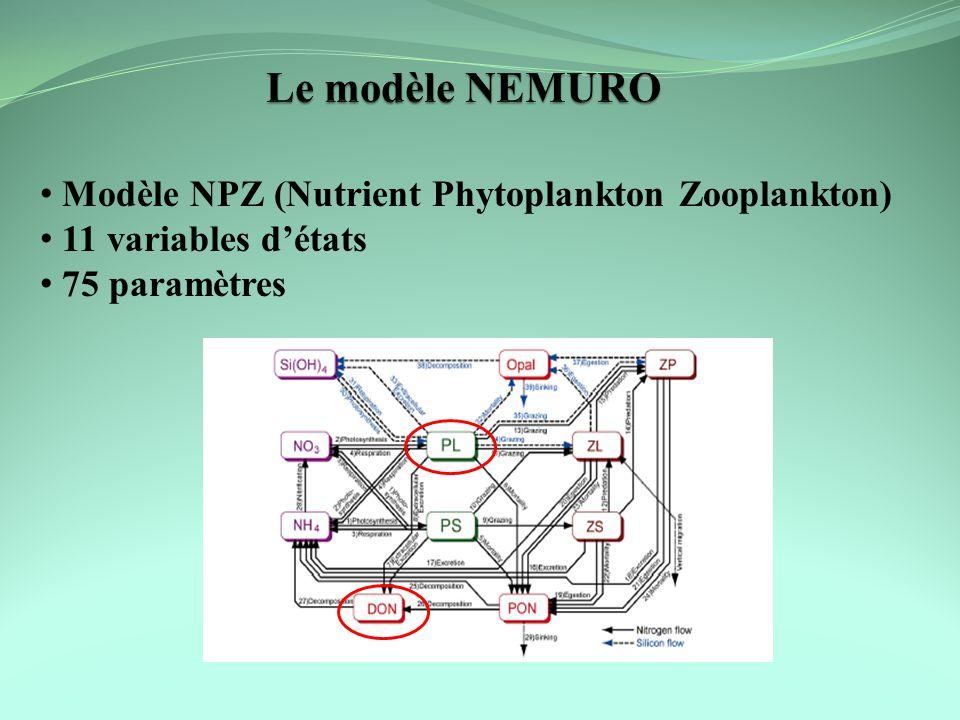 Modèle NPZ (Nutrient Phytoplankton Zooplankton) 11 variables détats 75 paramètres