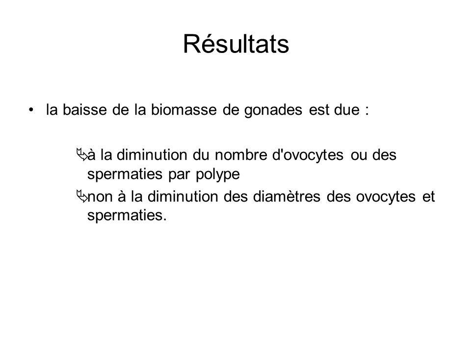 Résultats la baisse de la biomasse de gonades est due : à la diminution du nombre d ovocytes ou des spermaties par polype non à la diminution des diamètres des ovocytes et spermaties.