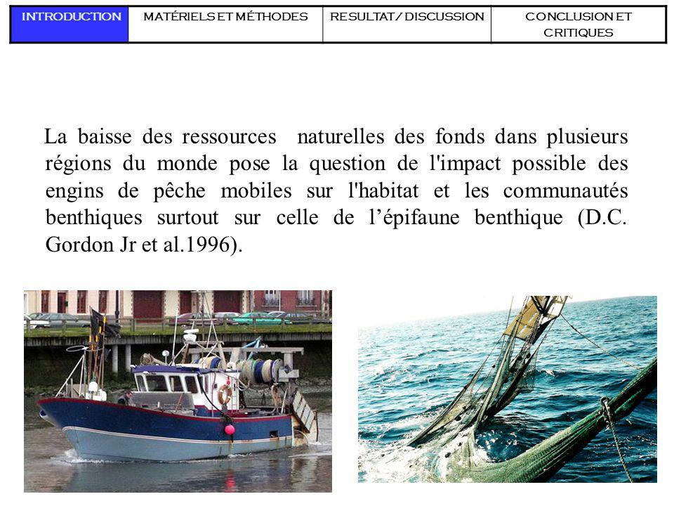 2 La baisse des ressources naturelles des fonds dans plusieurs régions du monde pose la question de l'impact possible des engins de pêche mobiles sur