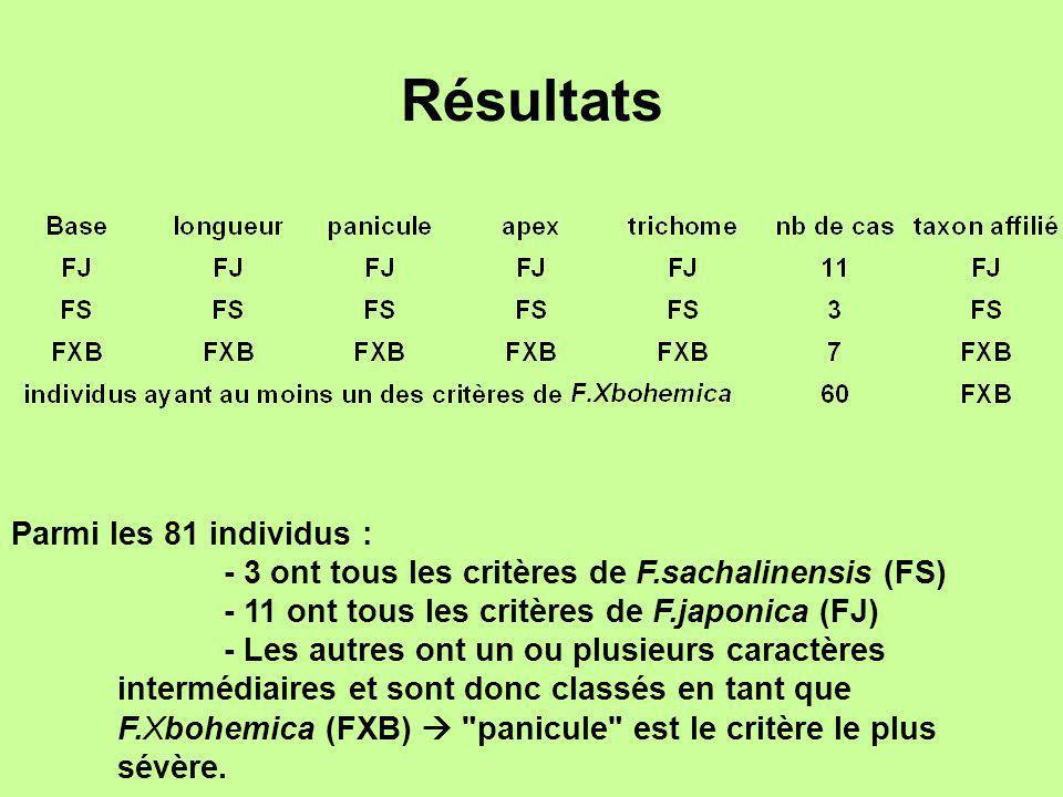 Résultats Parmi les 81 individus : - 3 ont tous les critères de F.sachalinensis (FS) - 11 ont tous les critères de F.japonica (FJ) - Les autres ont un