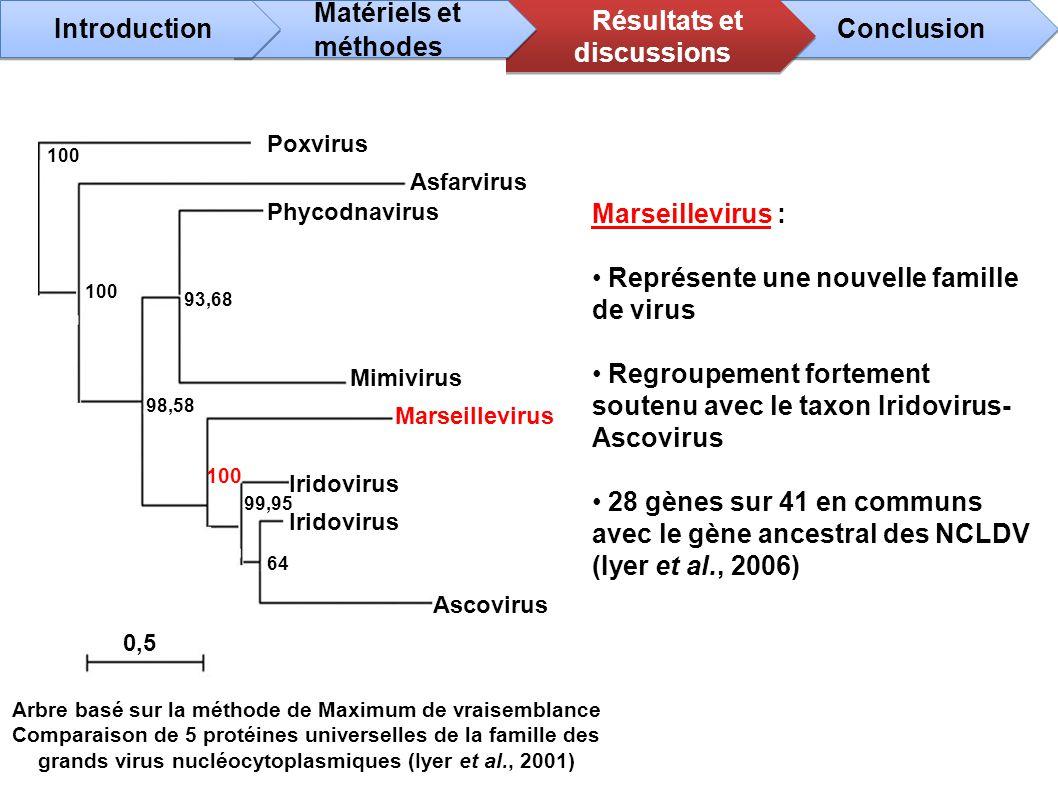 Marseillevirus : Représente une nouvelle famille de virus Regroupement fortement soutenu avec le taxon Iridovirus- Ascovirus 28 gènes sur 41 en commun