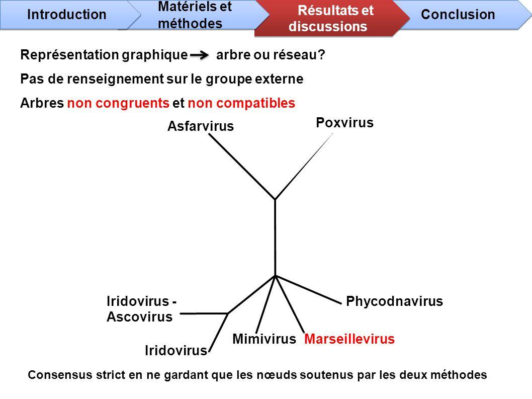 Phycodnavirus Marseillevirus Asfarvirus Poxvirus Iridovirus - Ascovirus Iridovirus Mimivirus Consensus strict en ne gardant que les nœuds soutenus par