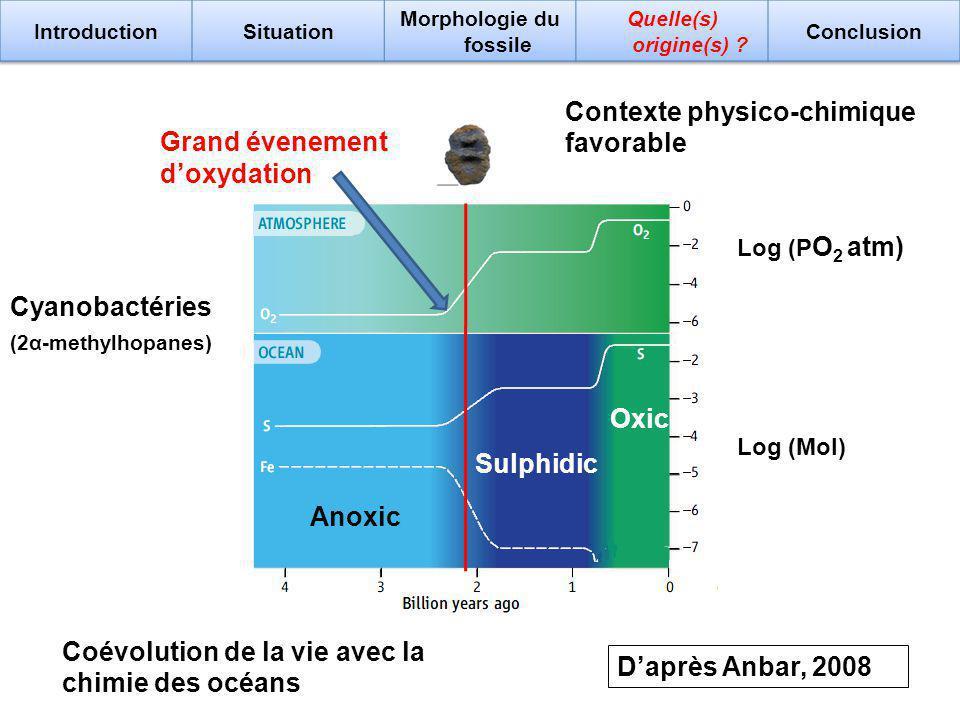 Contexte physico-chimique favorable Coévolution de la vie avec la chimie des océans Daprès Anbar, 2008 Log (Mol) Log (P O 2 atm) Cyanobactéries Grand évenement doxydation Anoxic Sulphidic Oxic (2α-methylhopanes)