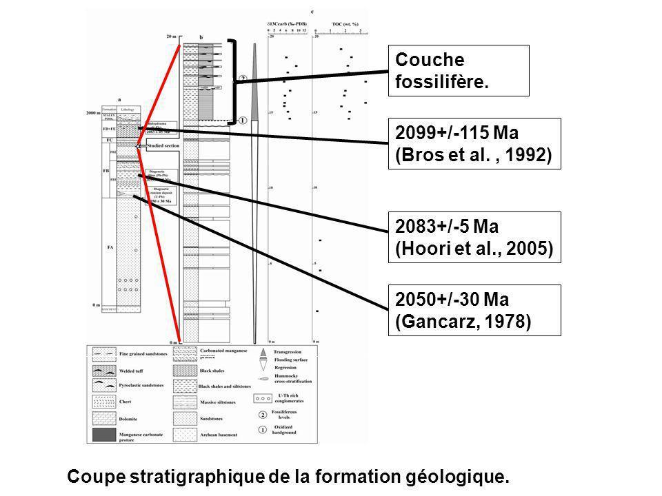 Couche fossilifère. 2099+/-115 Ma (Bros et al., 1992) 2083+/-5 Ma (Hoori et al., 2005) 2050+/-30 Ma (Gancarz, 1978) Coupe stratigraphique de la format