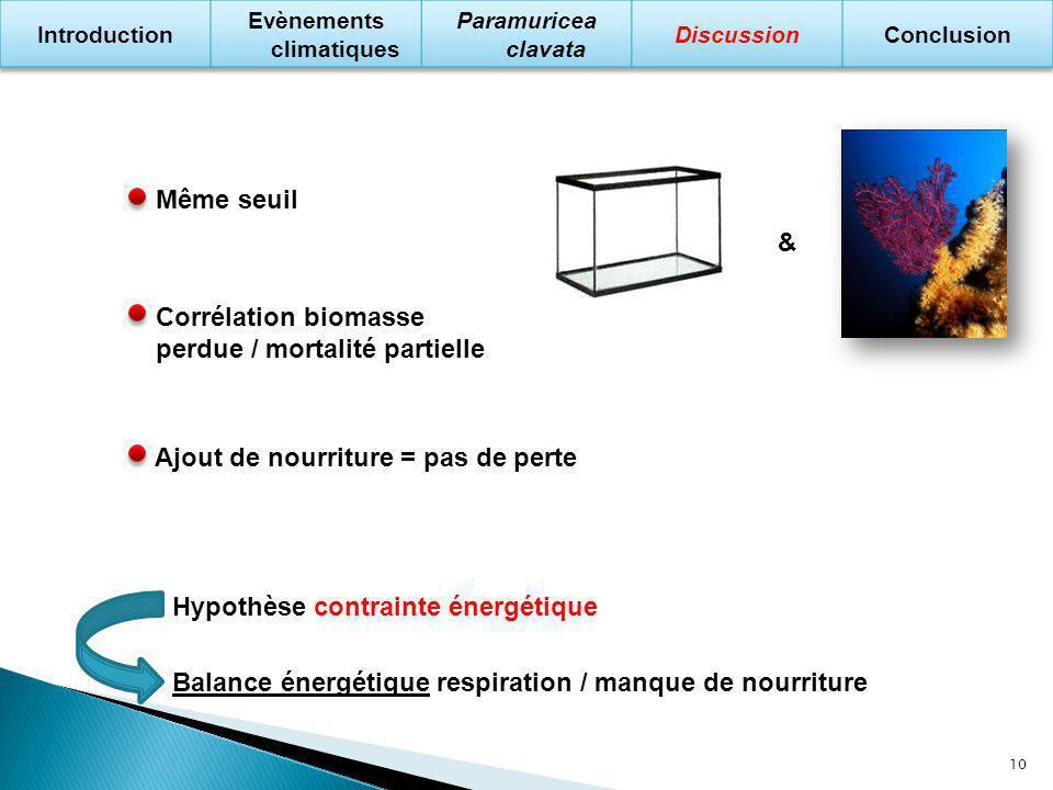 Hypothèse contrainte énergétique Balance énergétique respiration / manque de nourriture Même seuil & Corrélation biomasse perdue / mortalité partielle