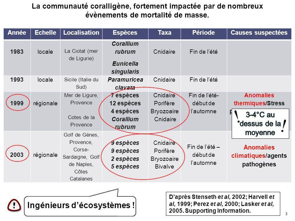 4 Mortalités de masse en Méditerranée : des causes inconnues.