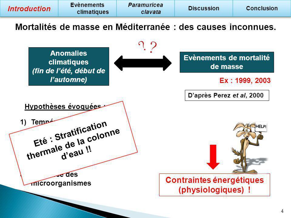 4 Mortalités de masse en Méditerranée : des causes inconnues. Anomalies climatiques (fin de lété, début de lautomne) Evènements de mortalité de masse