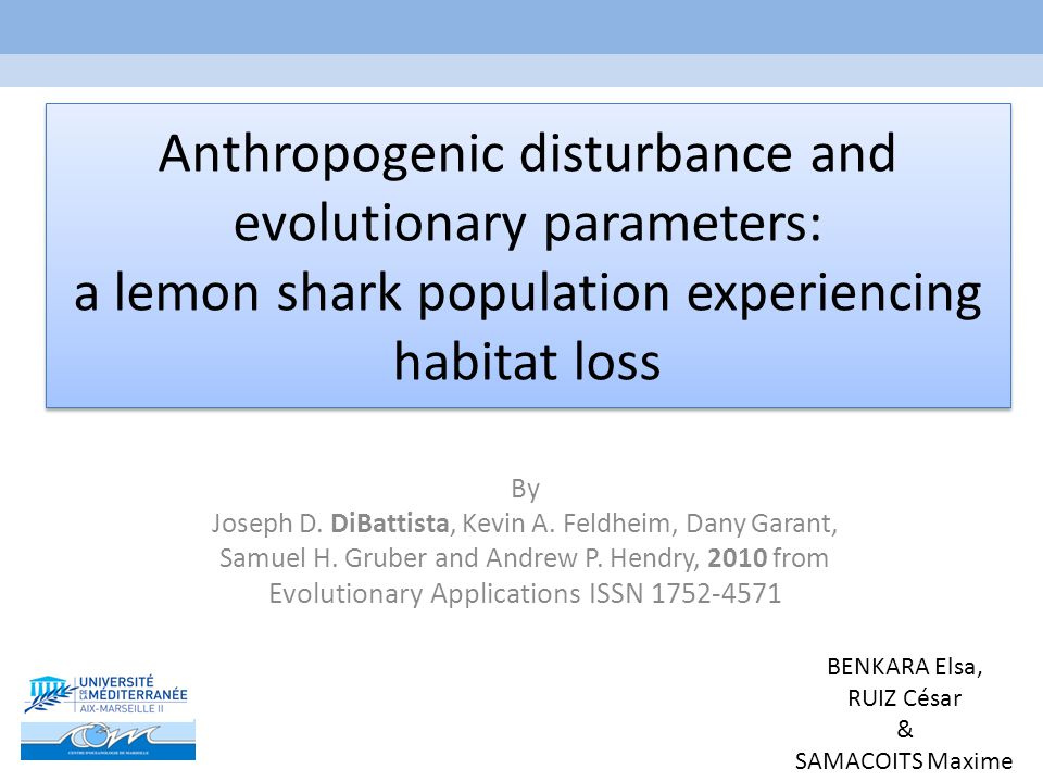 Anthropogenic disturbance and evolutionary parameters: a lemon shark population experiencing habitat loss By Joseph D.