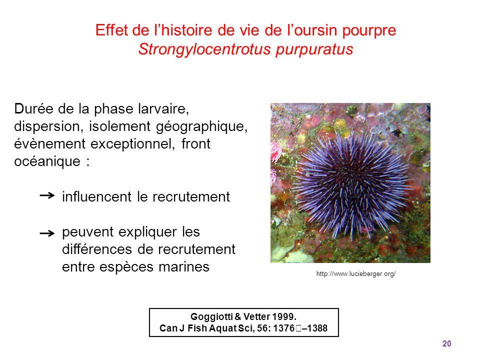 20 Durée de la phase larvaire, dispersion, isolement géographique, évènement exceptionnel, front océanique : influencent le recrutement peuvent expliq
