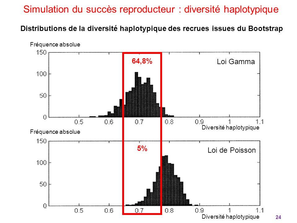 24 Simulation du succès reproducteur : diversité haplotypique Diversité haplotypique Fréquence absolue 64,8% 5% Loi Gamma Loi de Poisson Distributions