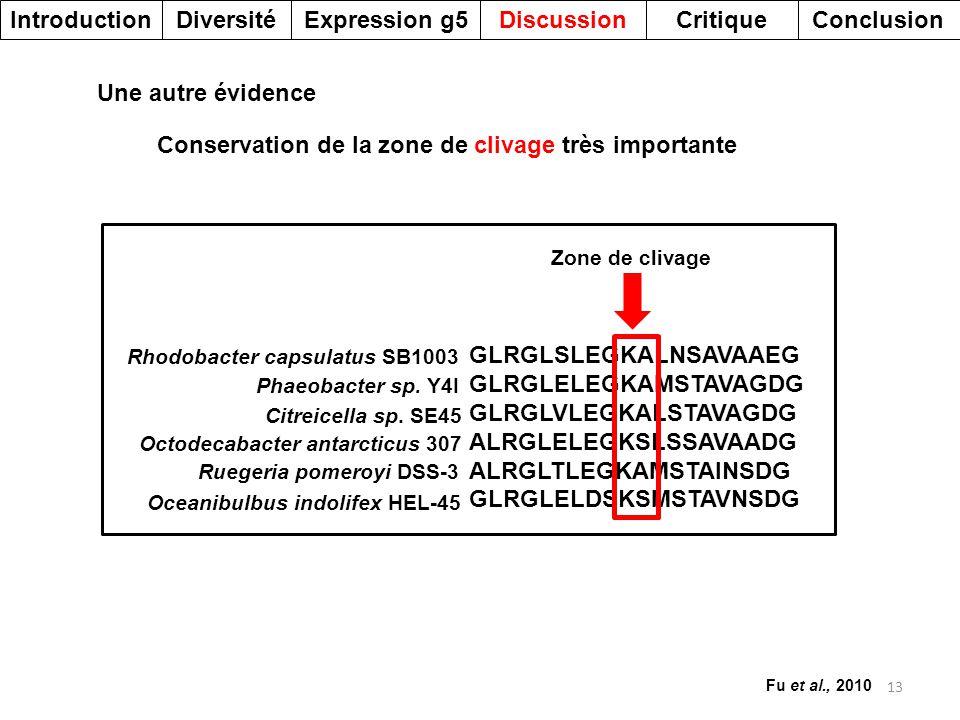 13 DiversitéDiscussionExpression g5IntroductionCritiqueConclusion GLRGLSLEGKALNSAVAAEG GLRGLELEGKAMSTAVAGDG GLRGLVLEGKALSTAVAGDG ALRGLELEGKSLSSAVAADG