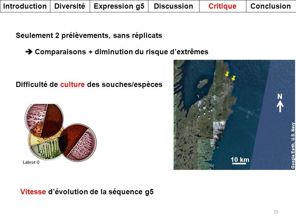 DiversitéDiscussionExpression g5Introduction 15 CritiqueConclusion Difficulté de culture des souches/espèces Seulement 2 prélèvements, sans réplicats
