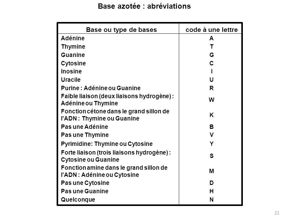 21 Base ou type de basescode à une lettre AdénineA ThymineT GuanineG CytosineC InosineI UracileU Purine : Adénine ou GuanineR Faible liaison (deux lia