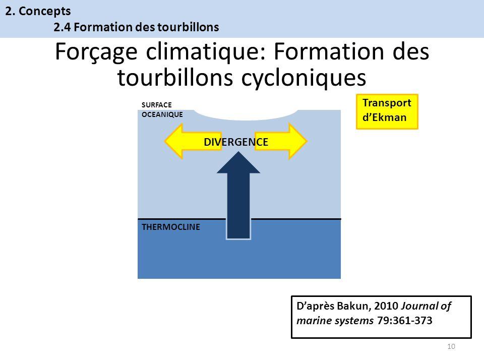 THERMOCLINE SURFACE OCEANIQUE Forçage climatique: Formation des tourbillons cycloniques Daprès Bakun, 2010 Journal of marine systems 79:361-373 10 2.