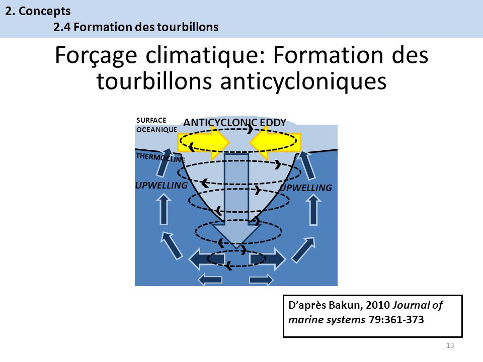 SURFACE OCEANIQUE UPWELLING ANTICYCLONIC EDDY THERMOCLINE Forçage climatique: Formation des tourbillons anticycloniques Daprès Bakun, 2010 Journal of marine systems 79:361-373 13 2.