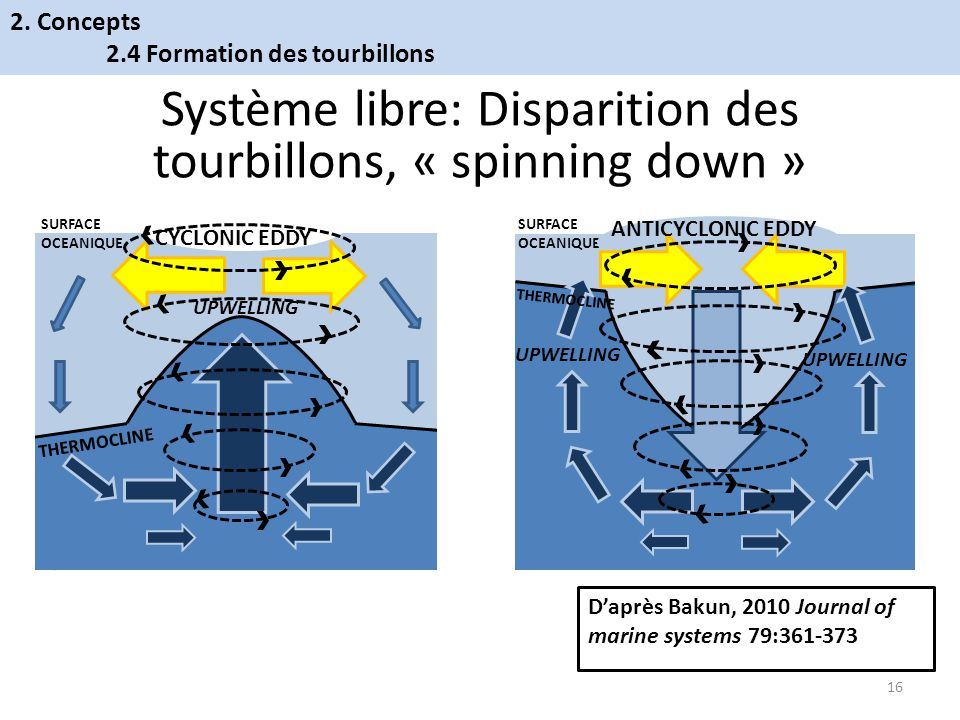 THERMOCLINE UPWELLING SURFACE OCEANIQUE CYCLONIC EDDY SURFACE OCEANIQUE UPWELLING ANTICYCLONIC EDDY THERMOCLINE Système libre: Disparition des tourbillons, « spinning down » Daprès Bakun, 2010 Journal of marine systems 79:361-373 16 2.