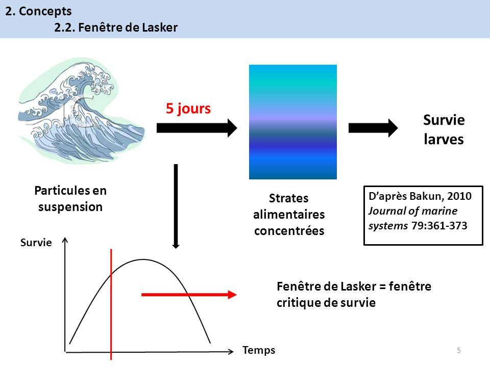 5 jours Particules en suspension Strates alimentaires concentrées Survie larves Fenêtre de Lasker = fenêtre critique de survie Temps Survie Daprès Bak