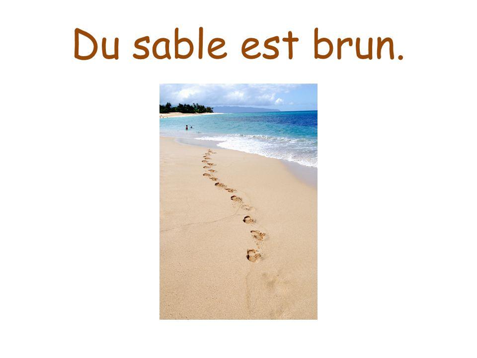 Du sable est brun.