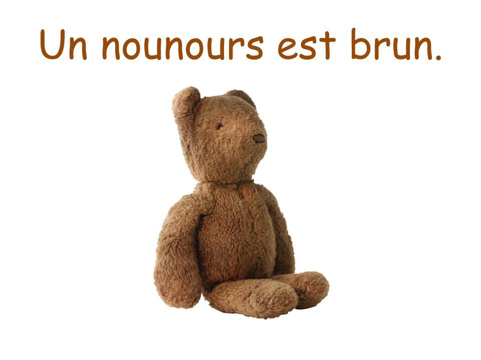 Un nounours est brun.