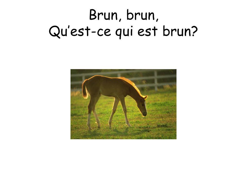 Un cheval est brun.