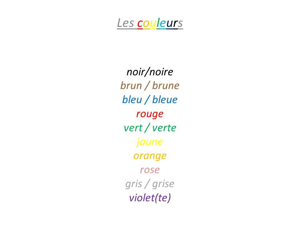 Les couleurs blanc / blanche noir/noire brun / brune bleu / bleue rouge vert / verte jaune orange rose gris / grise violet(te)