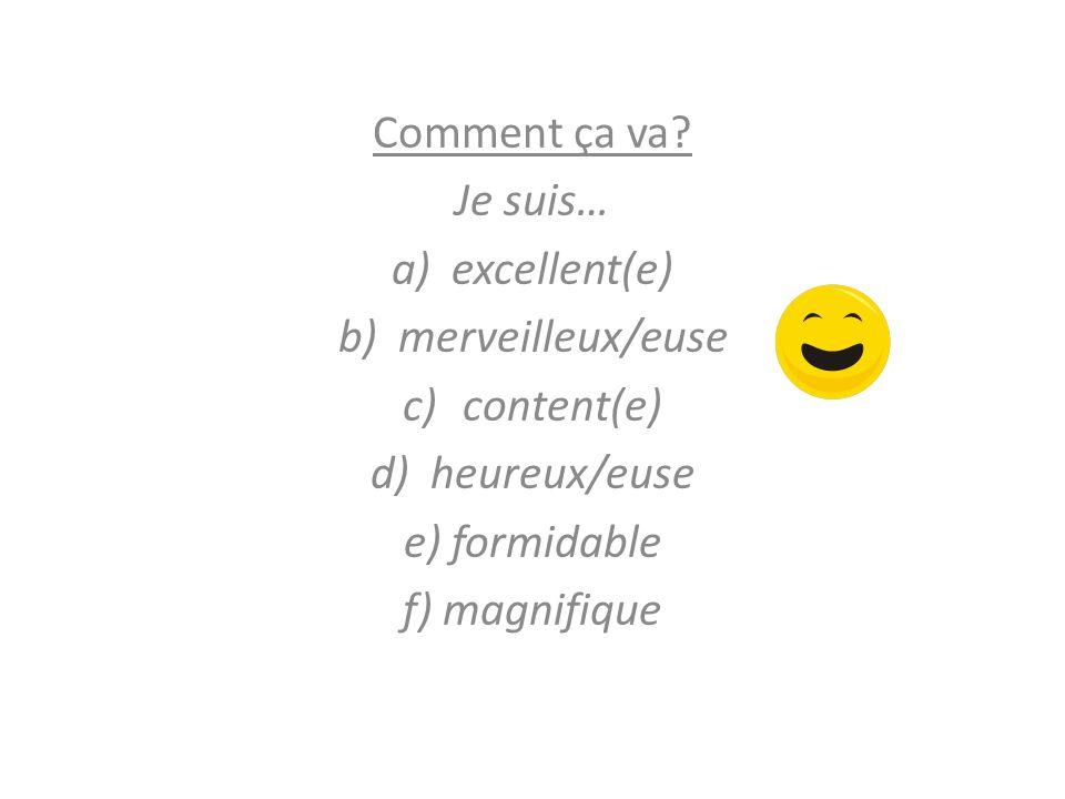 Comment ça va? Je suis… a)excellent(e) b)merveilleux/euse c)content(e) d)heureux/euse e) formidable f) magnifique