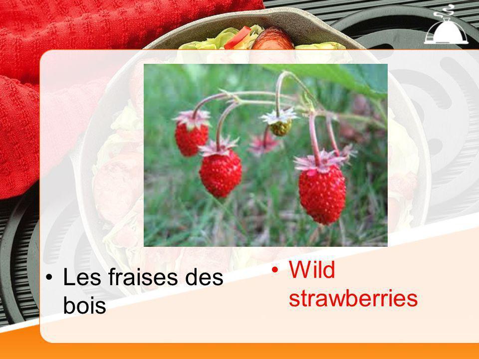 Les fraises des bois Wild strawberries