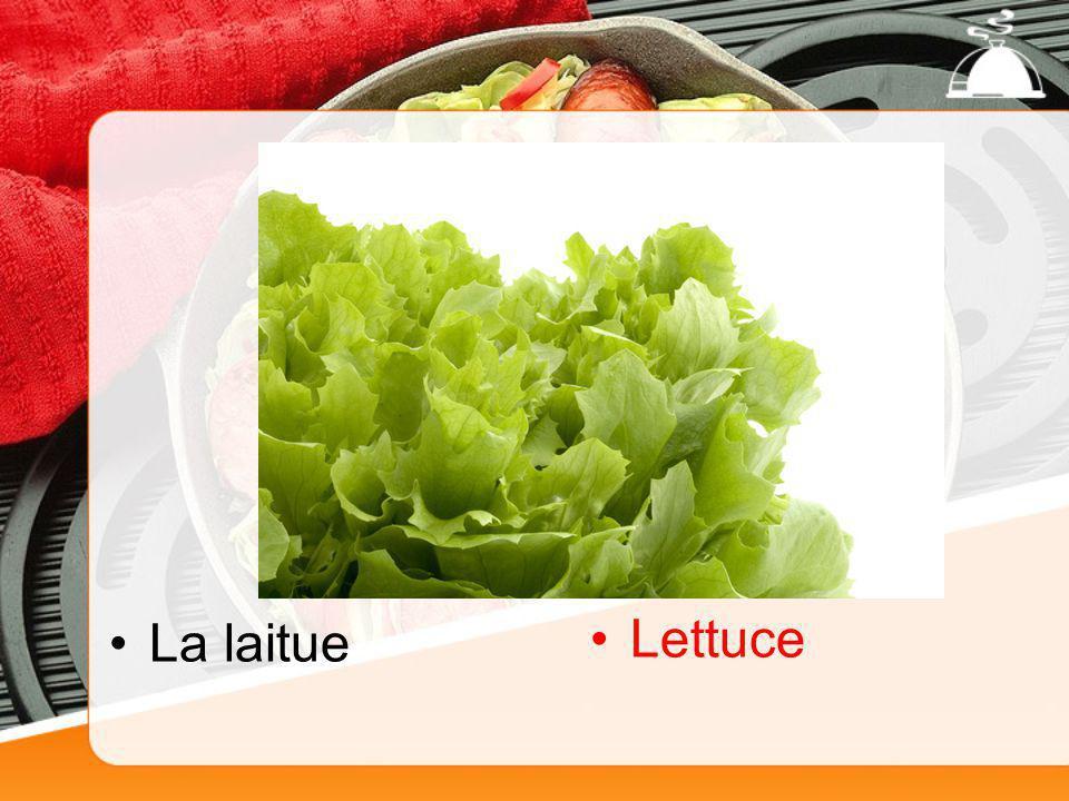La laitue Lettuce
