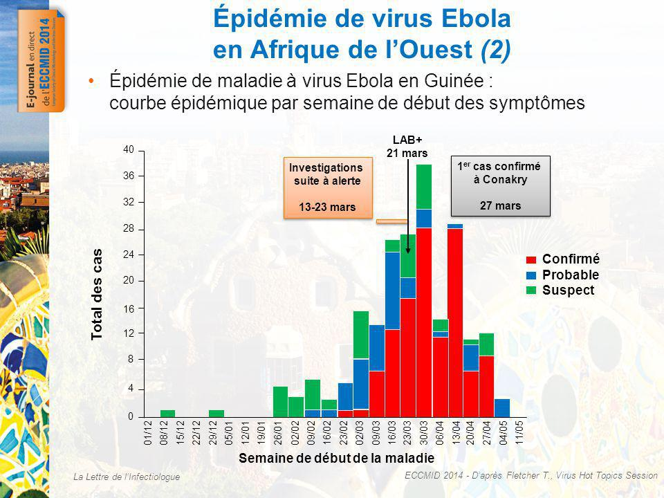La Lettre de lInfectiologue Épidémie de virus Ebola en Afrique de lOuest (2) Épidémie de maladie à virus Ebola en Guinée : courbe épidémique par semaine de début des symptômes Confirmé Probable Suspect 1 er cas confirmé à Conakry 27 mars 1 er cas confirmé à Conakry 27 mars Investigations suite à alerte 13-23 mars Investigations suite à alerte 13-23 mars LAB+ 21 mars Total des cas 40 36 32 28 24 20 16 12 8 4 0 01/1208/1215/1222/1229/1205/0112/0119/0126/0102/02 Semaine de début de la maladie 09/0216/0223/0202/0309/0316/0323/0330/0306/0413/0420/0427/0404/0511/05 ECCMID 2014 - Daprès Fletcher T., Virus Hot Topics Session