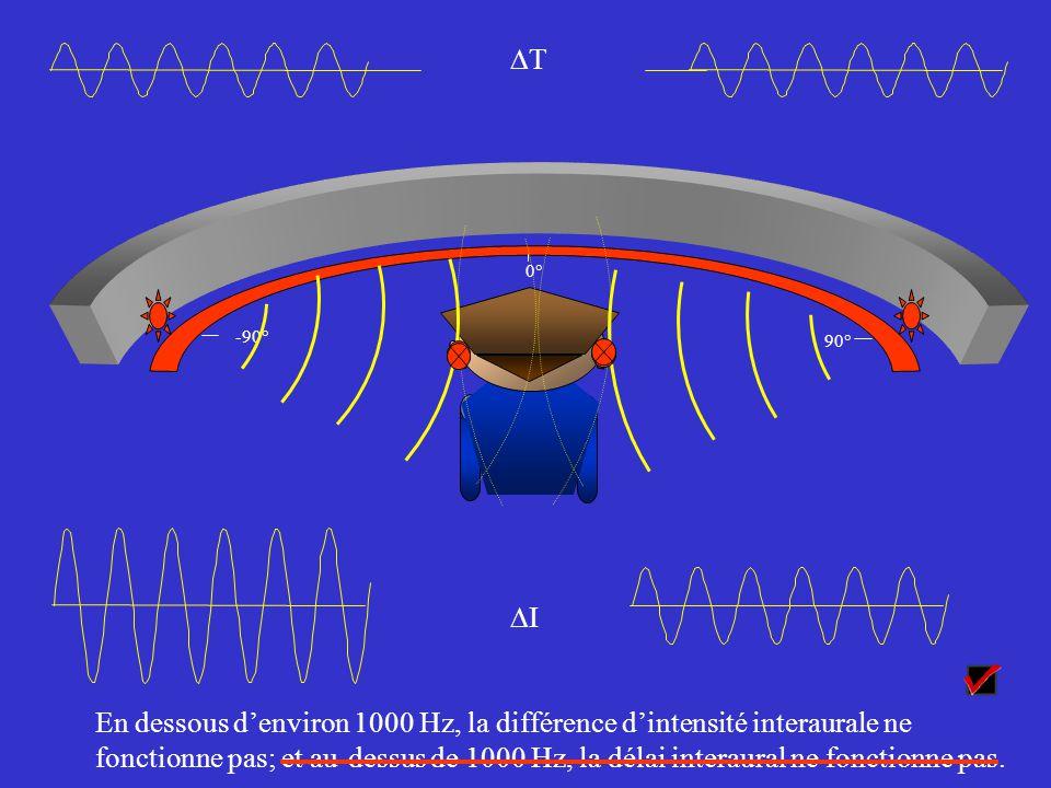 Olives supérieures 111 111 222 À droiteAu centre À gauche t0t0 t1t1 Vers le cortex pour signaler que le son venait de la gauche Codex t2t2 t3t3 t3t3 t4t4 t4t4