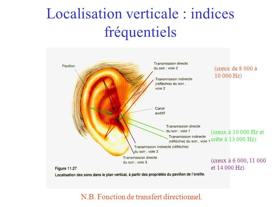 Localisation sonore Horizontale –Indices binauraux Délai interaural Différence dintensité interaurale Verticale –Indices (monoraux) spectraux Fonction de transfert directionnel Distance