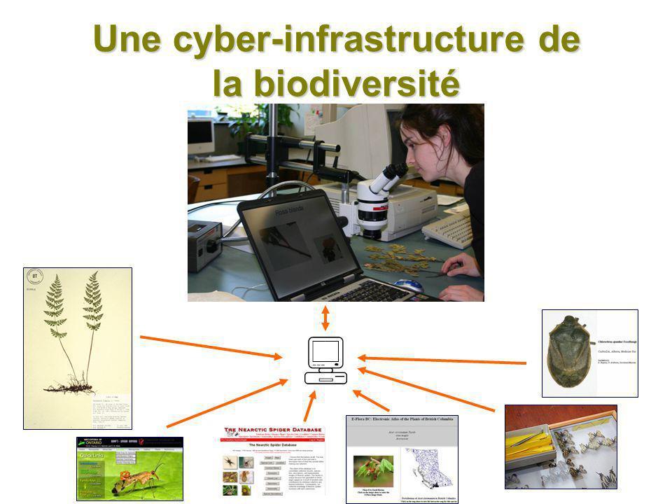 Réseau pancanadien de la biodiversité (Canadensys) universités jardins botaniques musées